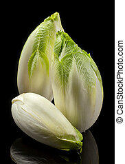 Green chicory vegetable closeup on black background