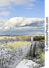 Beach Fence Path - A dune fence with a path to the water and...