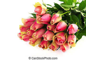 Bouquet pink roses isolated on white background