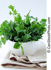 green, organic parsley in a white cup