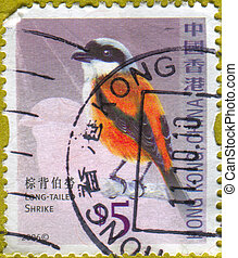stamp - HONG KONG - CIRCA 2006: stamp printed by Hong Kong,...