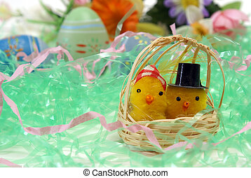 Mom and Pop Chicks - A couple of chicks in a basket with...