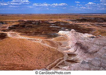 Petrified Forest - scenic landscape of the ancient petrified...