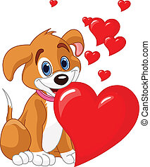 Puppy holding a red heart in her m - Cute puppy holding a...