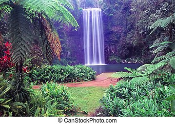 Millaa Millaa Falls - Australia - The famous Millaa Millaa...