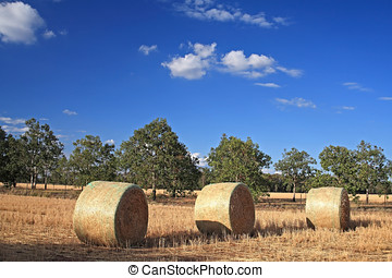 Haybales - three haybales in a paddock in outback Australia...