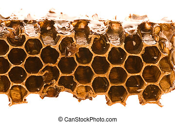Honeycomb Macro - Isolated macro image of honeycomb with...