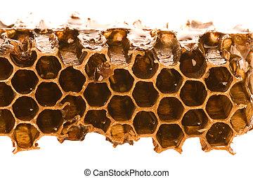 Honeycomb Macro - Isolated macro image of honeycomb with...