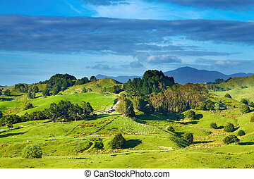 New Zealand landscape - Landscape with green hills and blue...