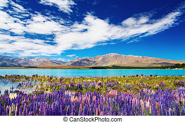 Mountain lake - Mountain landscape with lake and flowers,...