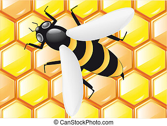 bee on honeycombs background illustration