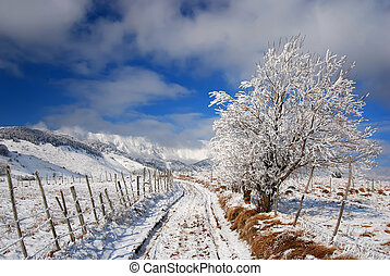 Winter road landscape in countryside - Rural road in winter...