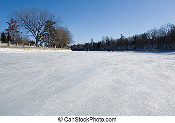Rideau Canal - Skating ring of Rideau Canal, Ottawa