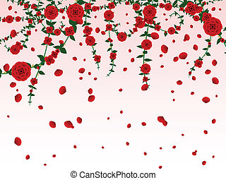 Hanging roses and falling flower petals background