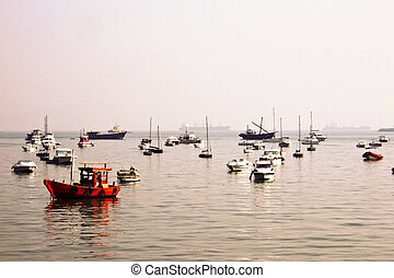 Bombay Harbour Boats - A group of fishing boats and paddle...