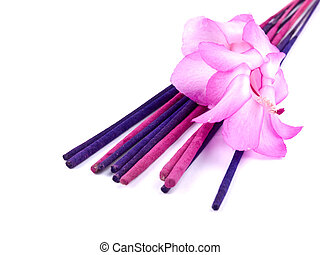 Purple incense and pink cactus flower