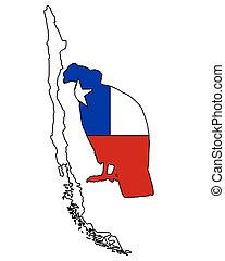 condor, Cile, andino