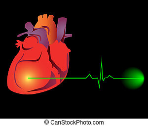 Heart with the cardiogram