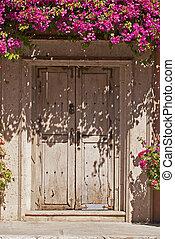 Old wooden door with blooming foliage - Old wooden door in...