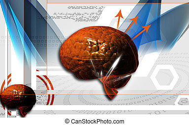 Brain - Digital illustration of brain in colour background...