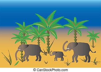 Elephants, picture