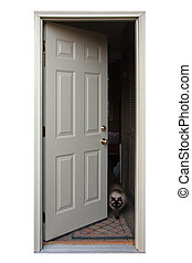 Open Door - An open door with a cat walking out.