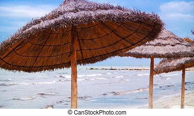 Thatched beach umbrellas in Tunisia