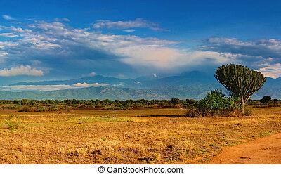 African savanna and Rwenzori Mountains, Queen Elizabeth...