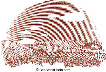 Tuscan Landscape - Woodcut style illustration of an Italian...