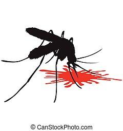 Leech mosquito