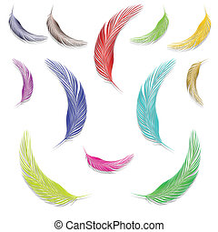 feathers in colors against white background, abstract vector...