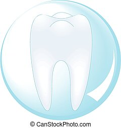 tooth is protected by a glass ball
