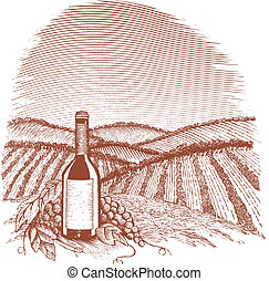 Woodcut Vinyard - Woodcut style illustration of a wine...