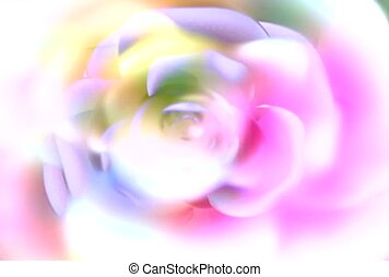 Revolving Rose