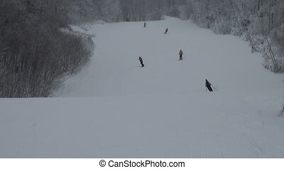 Skiers going downhill on snowy day