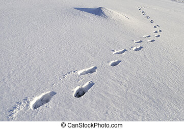 Human footprints in deep snow on sunny day