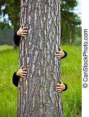 Humorous collage - man climbs up a tree - Humorous collage -...