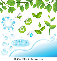 Collection Of Green Branches And Water Elements, Isolated On...