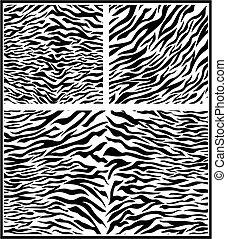 zebra animal print - animal print of zebra skin in vector...