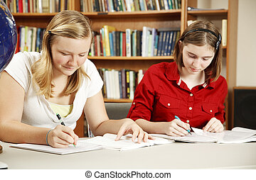 Studying in the Library - Two high school students doing...