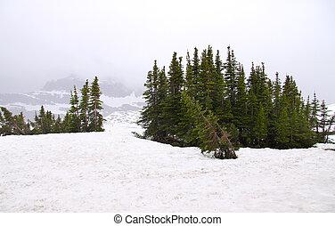 Logan pass - Scenic view of Logan pass in Montana