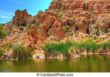 Desert Pond