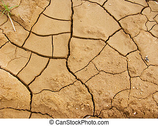 Dry and cracked ground, close up