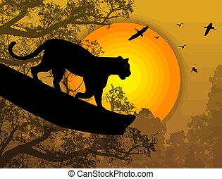 Panther on a tree - Silhouette view of panther on a tree at...