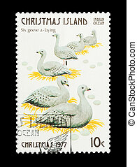six geese laying - Part of a set of 12 mail stamp printed on...