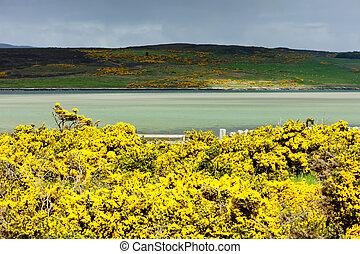 Loch Eriboll, Highlands, Scotland