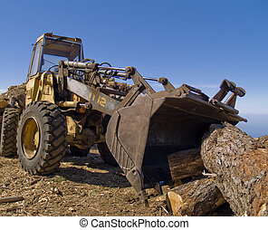 lumber industry - buldozer with pine logs