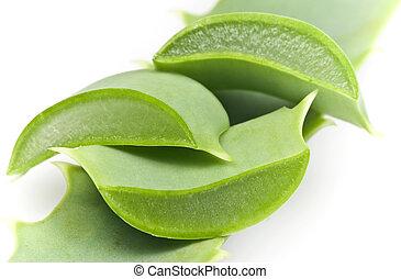 Aloe Vera - Sliced Aloe Vera leaf