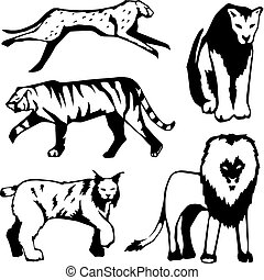 Five big cats - Five stylized illustrations of large cats