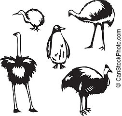 Flightless birds - Five stylized vector illustrations of...